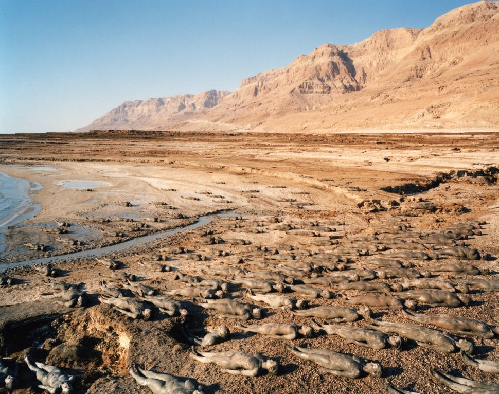 Dead Sea, 2011