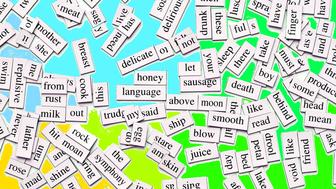 Magnetic Words Collection