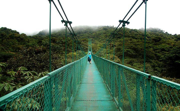 Stroll above the treetops on Monteverde's Skywalk network of network of suspension bridges.
