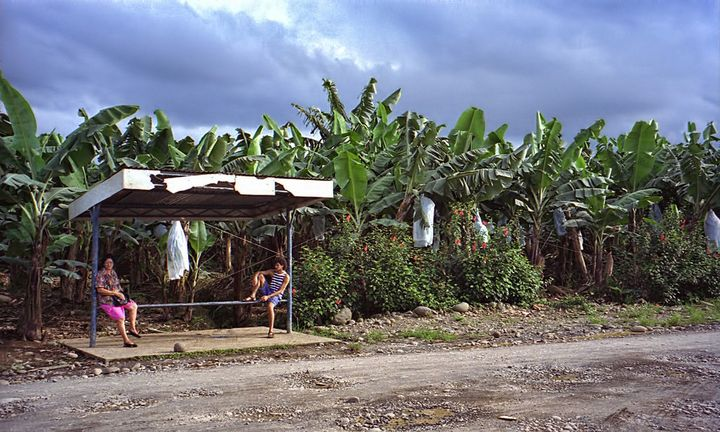 Waiting for the bus at a banana plantation bus stop in Costa Rica.