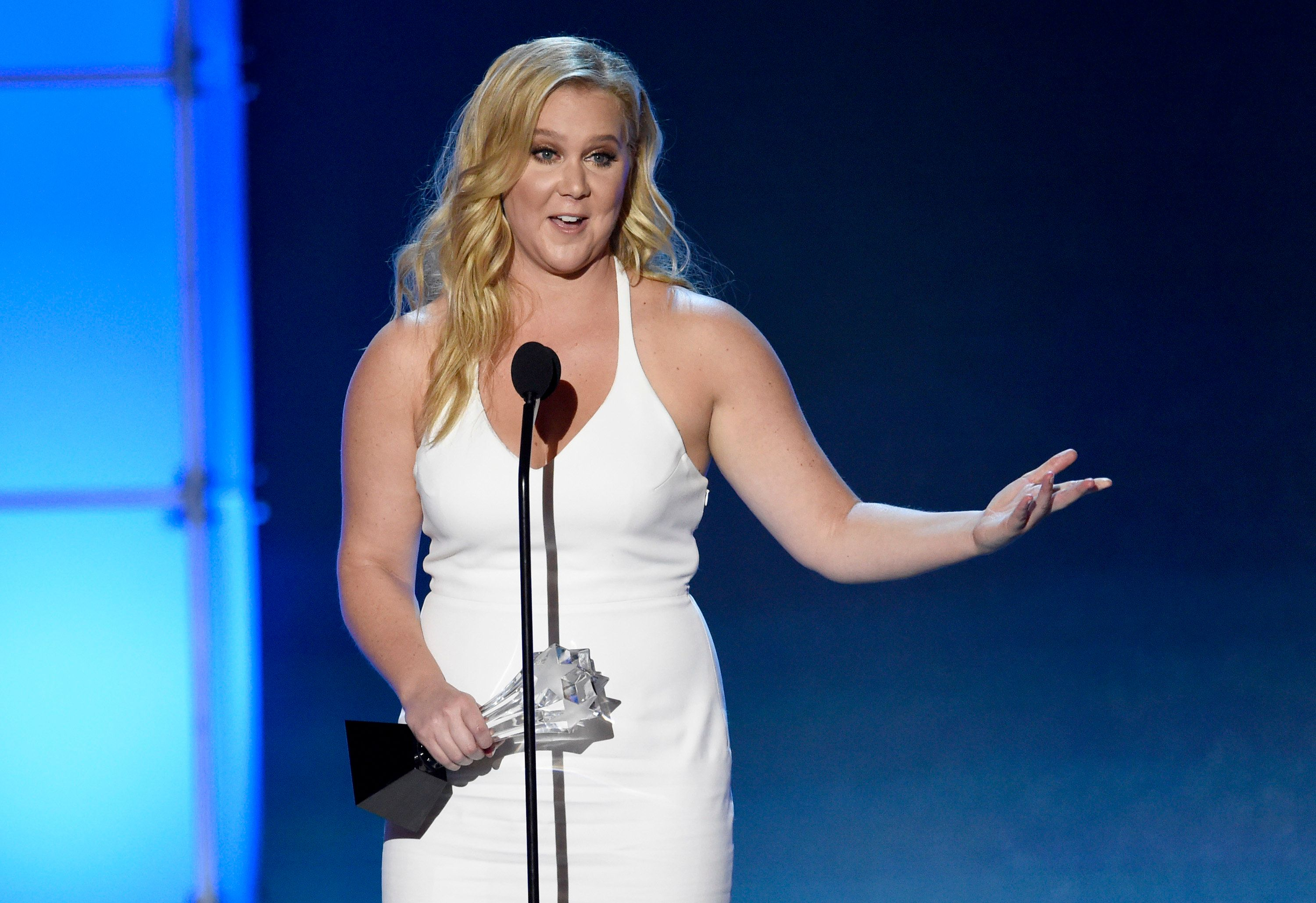 Amy Schumer Just Totally Shut Down A Sexist Heckler Who Demanded To See Her