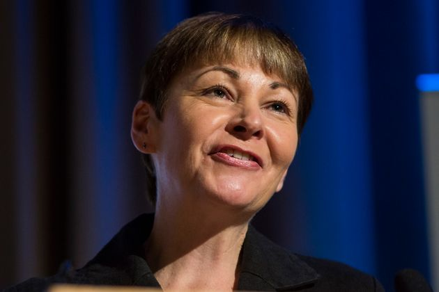 Caroline Lucas and Jonathan Bartley voted joint leaders of Green party