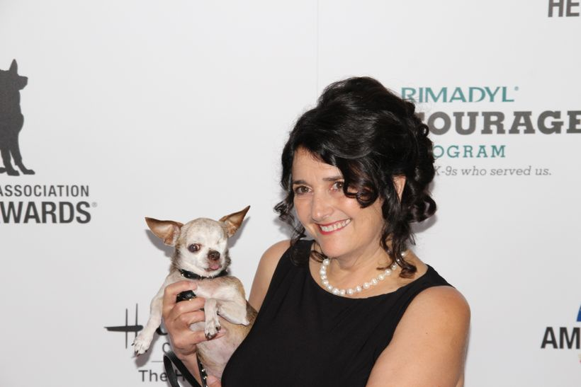 "Harley with his ""mom"" Rudi Taylor during the 2015 American Humane Association Hero Dog Awards."