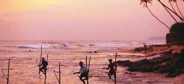 Explore Sri Lanka Like A Local
