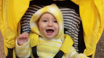 Happy boy in the stroller