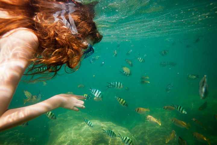 Meeting underwater creatures in the waters around Ko Lao Liang is an essential Thailand experience.