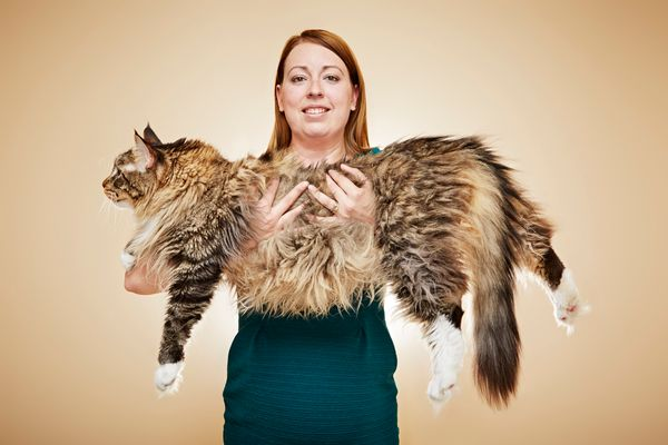 longest cat living guinness world records - Biggest Cat In The World Guinness 2015