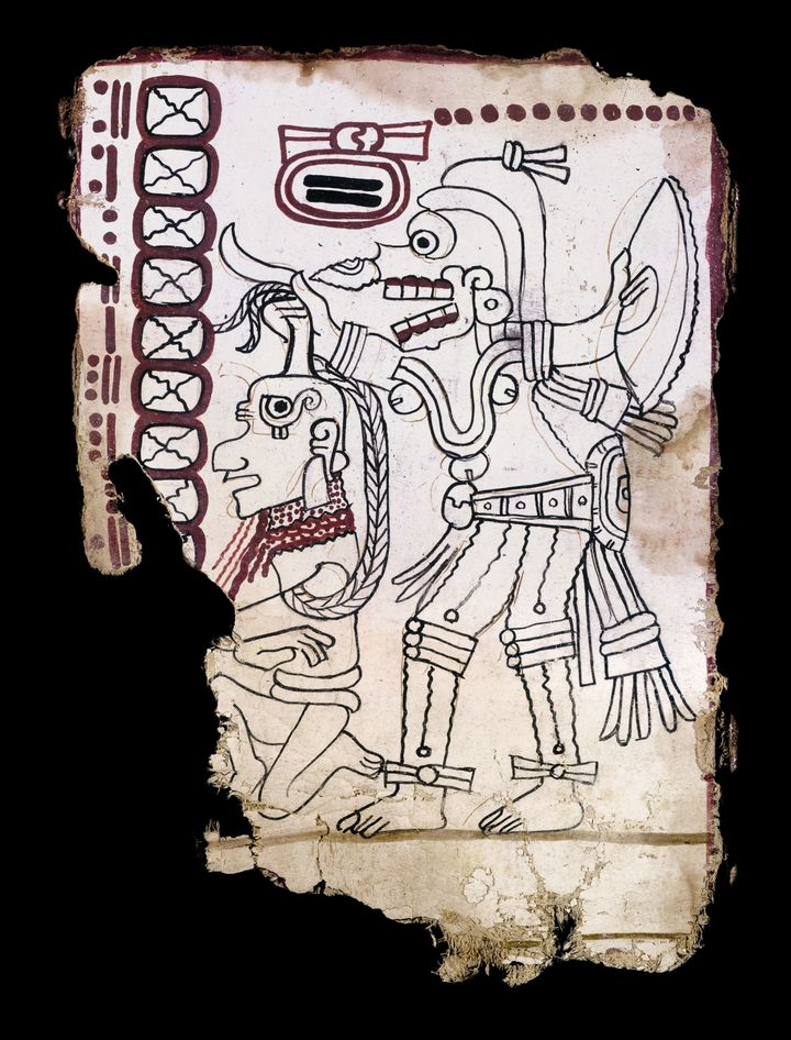 Photo of a page from the codex.