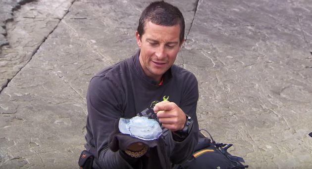 Bear Grylls and the offending