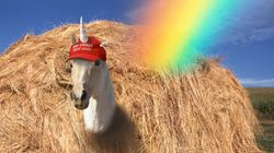My Search For A Lesbian Donald Trump