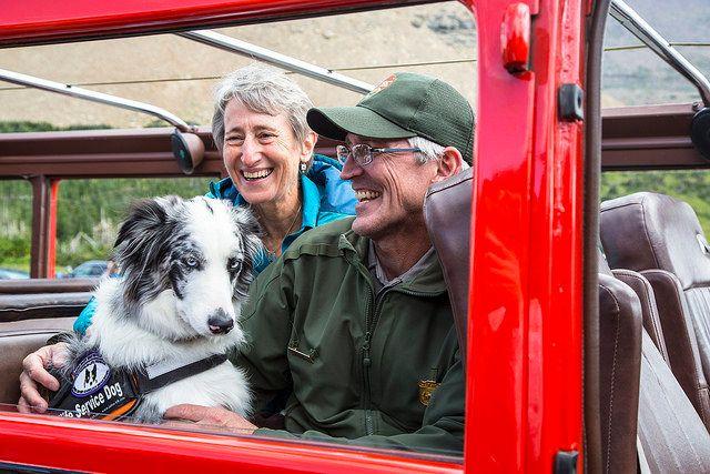 """""""Bark Ranger"""" Gracie is pictured at Glacier National Park last month with her handler, park rangerMark Biel, and U.S. S"""