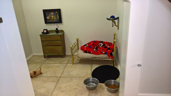 """<a href=""""http://abcnews.go.com/Lifestyle/chihuahua-bedroom-womans-stairs-bed-oil-painting/story?id=41916637"""">""""He is ter"""