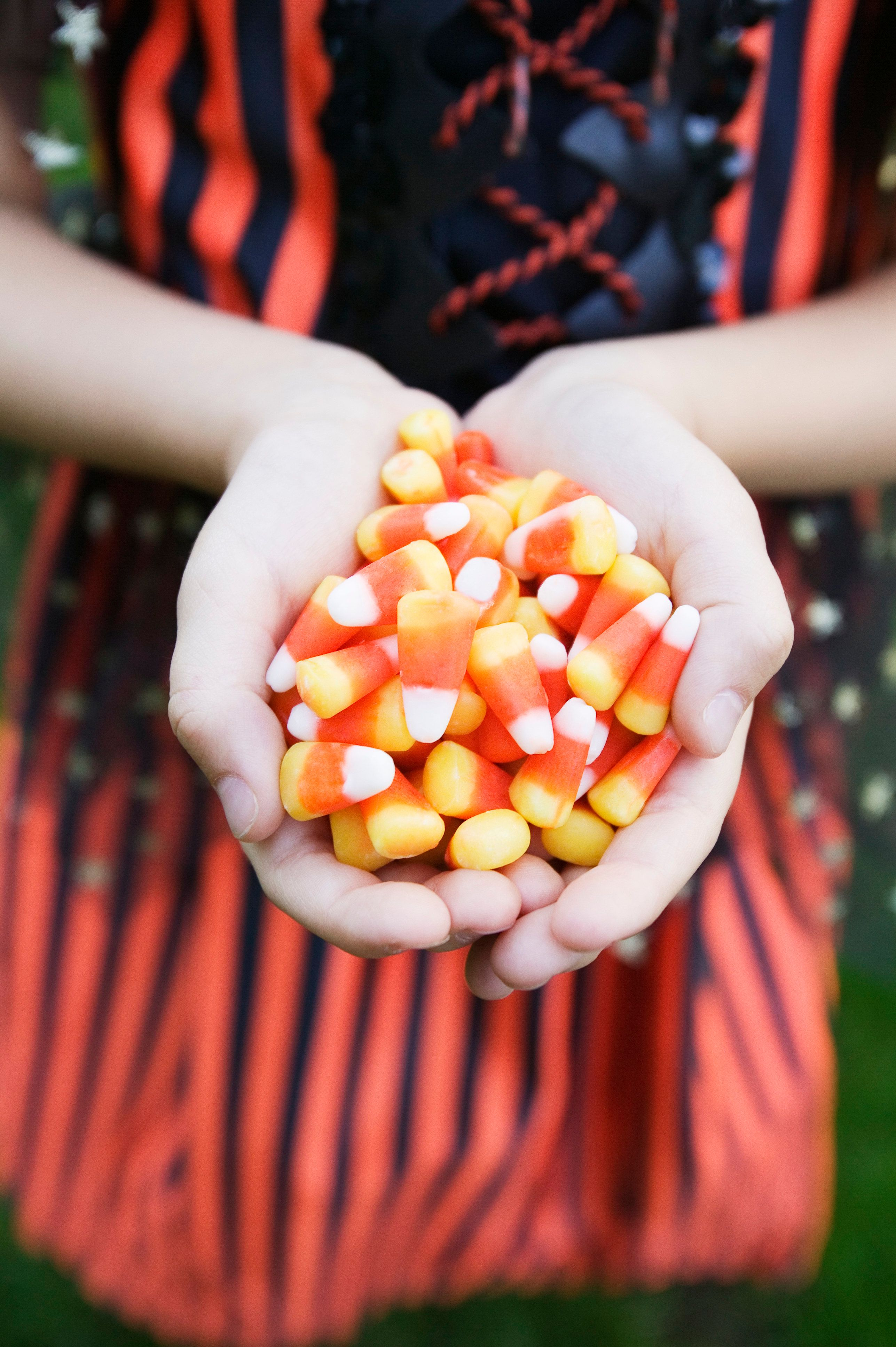 Girl (4-5) holding handful of candy corn,  mid section