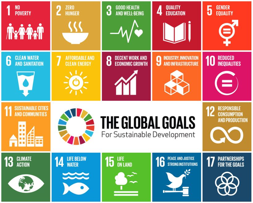 The SDGs feature 17 goals designed to work in tandem to eradicate poverty and inequality