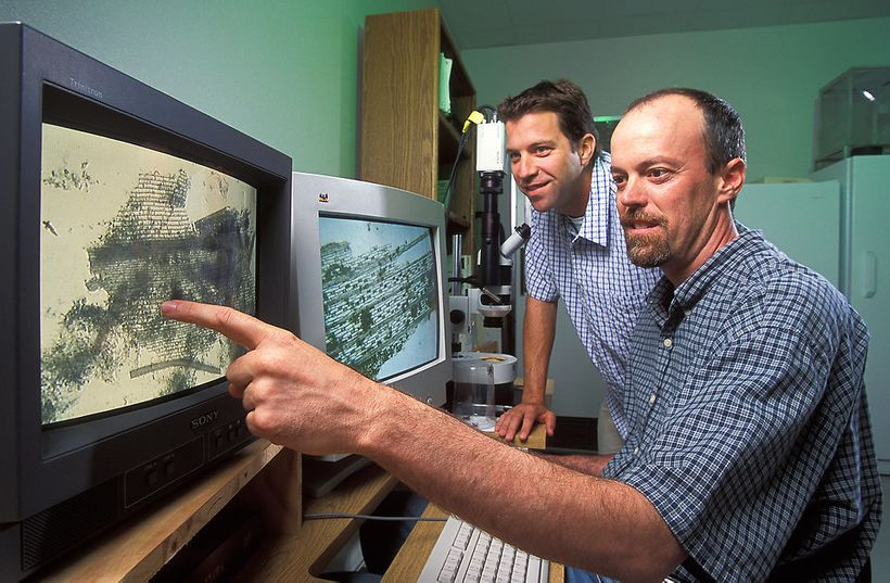 Researchers analyzing computer data