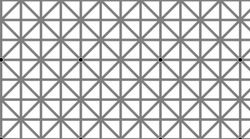 This Black Dots Optical Illusion Does A Strange Thing To Your