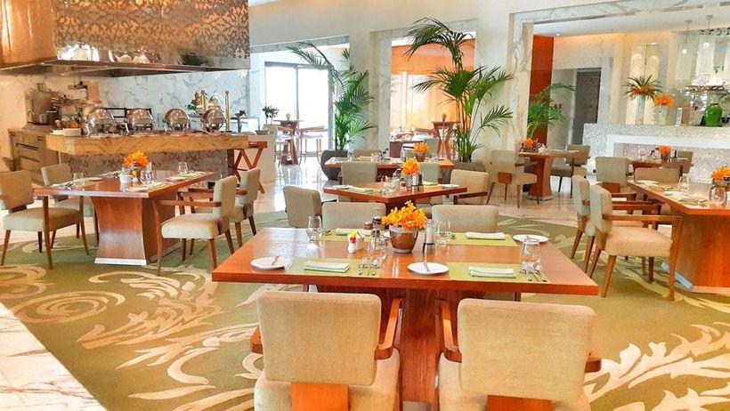 Elegant and warm interiors of the restaurant