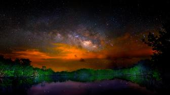 USA: Feature Rates Apply  MANDATORY CREDIT: Mark Andrew Thomas/Rex Shutterstock. Only for use in this story. Editorial Use Only. No stock, books, advertising or merchandising without photographer's permission