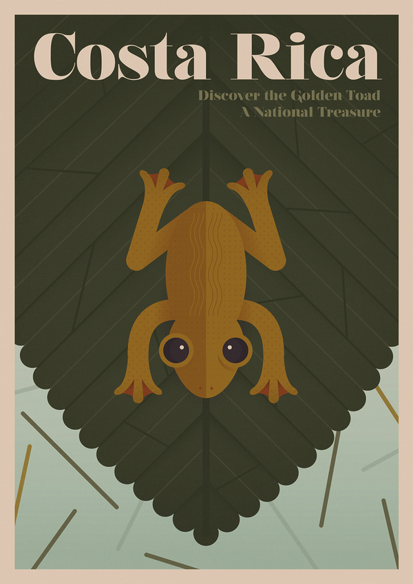 Scientists long believed that the golden toad, last seen in 1989, went extinct due to the effects of human-driven climat