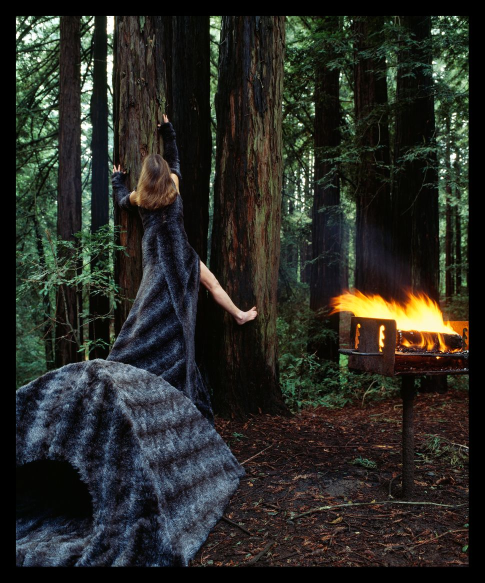 """Furry Dress Tent,"" Installed at the Redwood Regional Park in Oakland, California, 2005."