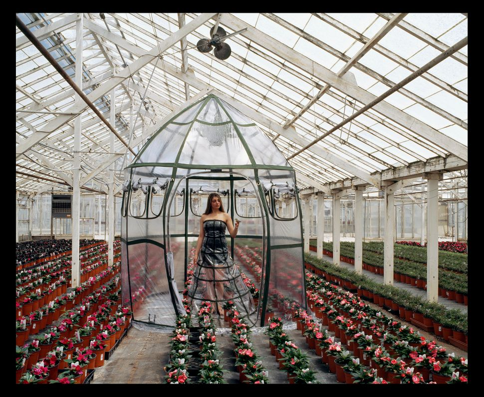 """Greenhouse Dress Tent,"" Installed at a former working greenhouse for commercial plants in Richmond, California."