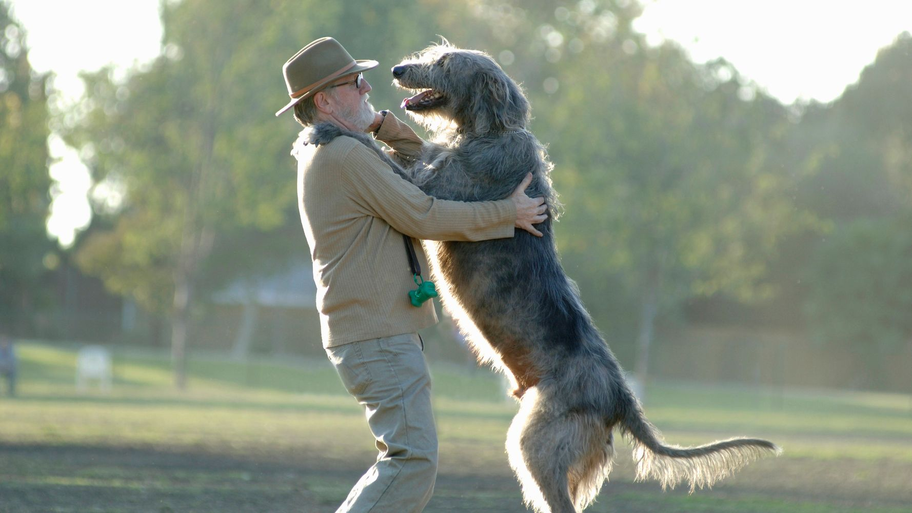 The 10 Health Benefits Of Dogs (And One Health Risk) | HuffPost
