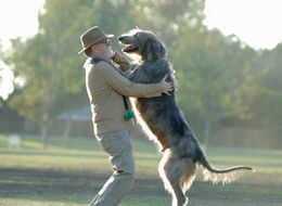 The 10 Health Benefits Of Dogs (And One Health Risk)