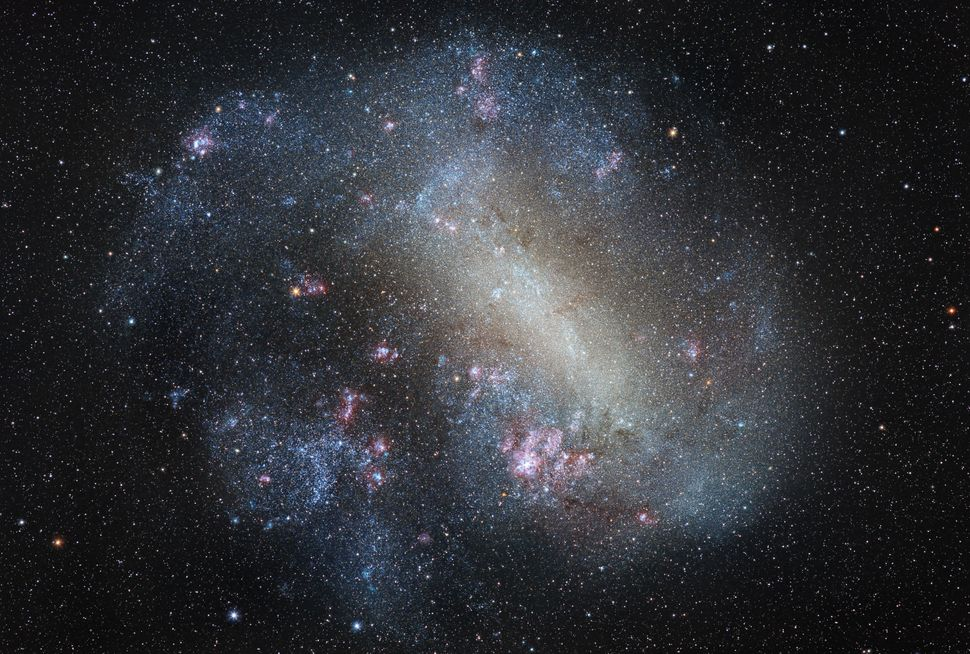 The Milky Way's close neighbor, the Large Magellanic Cloud, showcases stars of all ages within its 14,000-light-year di