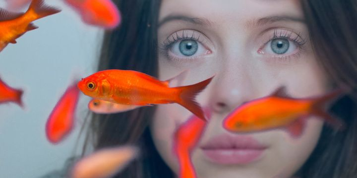 """""""Diary of a Teenage Girl"""" star Bel Powley in a still from the new film """"Carrie Pilby."""""""