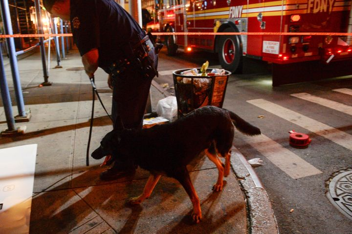 Police use a dog to search  the site of an explosion in the Chelsea neighborhood of Manhattan, New York City, on Saturda