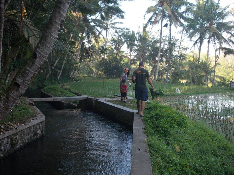 Me walking by a canal in Bali. When you're a connected blogger you can wander through the enchanting rice fields around Ubud.