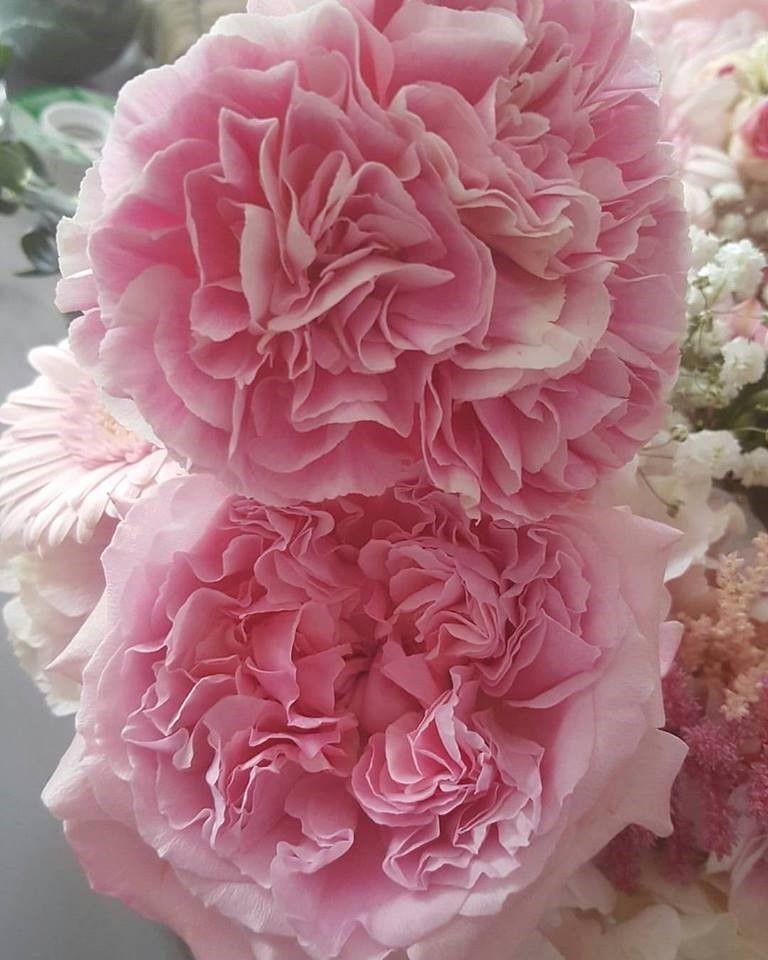 photo courtesy of Kelly L'Esperance of Miss Fleur Floral Design