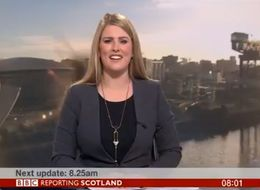 Viewers Terrified As BBC News Broadcast Invaded By Giant Wasp