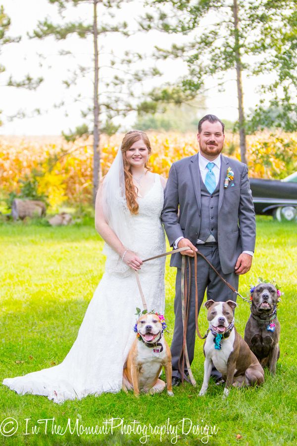 """""""The wedding of Brandon and Tracy on Friday in Manhattan, Illinois was completed with their family photos. Their family inclu"""