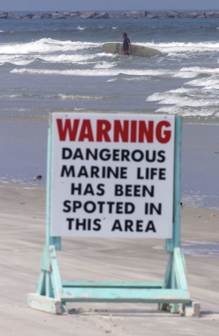 A sign warned of dangerous marine life near New Smyrna Beach's Ponce Inlet on Aug. 28, 2001, after 10 shark attacks had