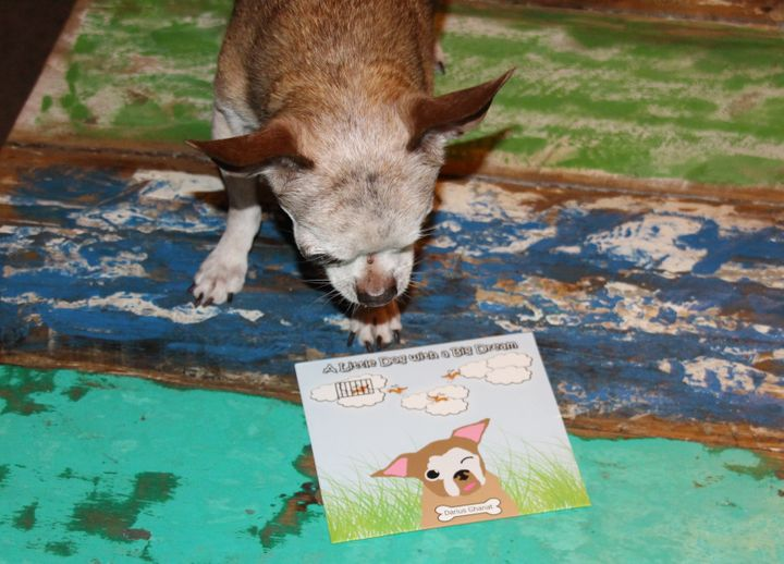 "Harley with the CD, ""A Little Dog with a Big Dream"""