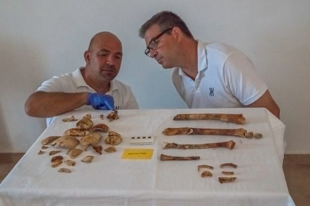 Antikythera Project codirectors Theotokis Theodoulou and Brendan Foley inspect the skeletal remains:...