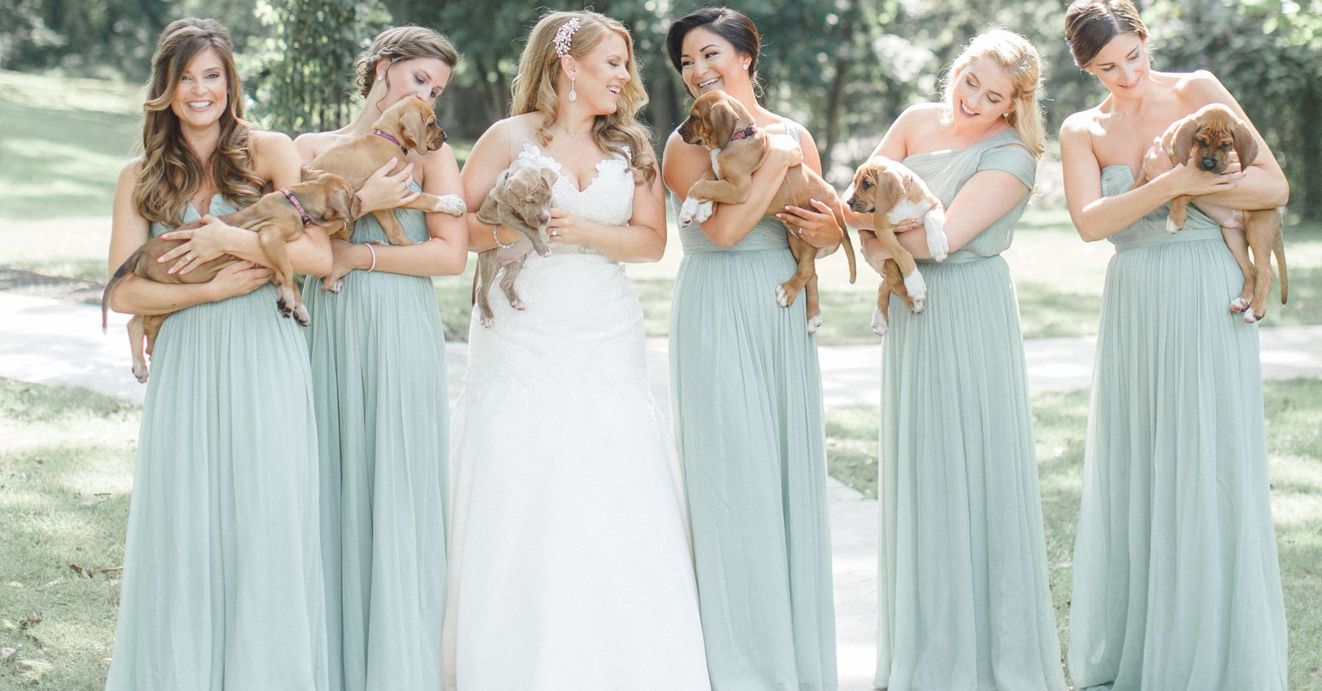 This Bridal Party Ditched Their Bouquets And Held Rescue Pups ...