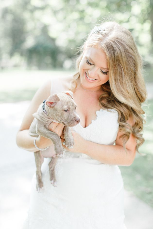 http://www.huffingtonpost.com/entry/this-bridal-party-ditched-their-bouquets-and-held-rescue-pups-instead_us_57e05839e4b04a1497b62e5a