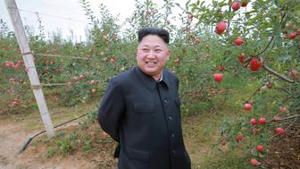 North Korean leader Kim Jong Un gives field guidance to the Kosan Combined Fruit Farm in this undated photo released by North Korea's Korean Central News Agency (KCNA) in Pyongyang September 18, 2016.KCNA via REUTERS  ATTENTION EDITORS - THIS IMAGE WAS PROVIDED BY A THIRD PARTY. EDITORIAL USE ONLY. REUTERS IS UNABLE TO INDEPENDENTLY VERIFY THIS IMAGE. NO THIRD PARTY SALES. SOUTH KOREA OUT.