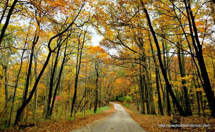 <p>Louisville, Kentucky in the fall is a must-visit destination!</p>