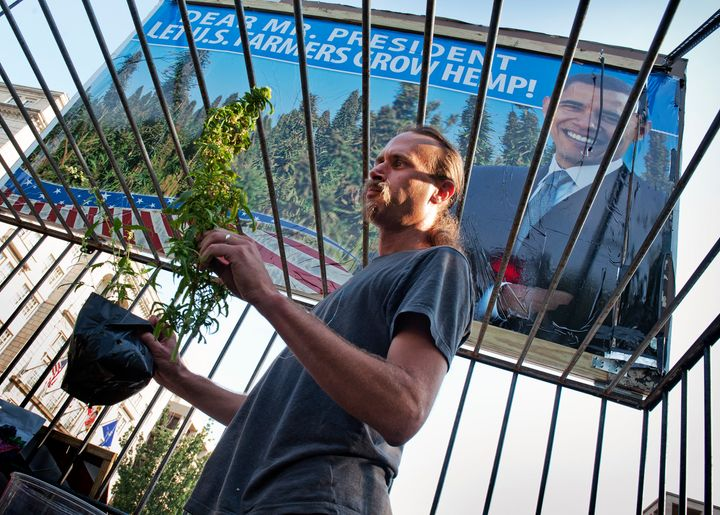 CEO David Bronner was once arrested for locking himself in a cage full of hemp in the middle of Washington, D.C.
