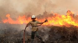 Southeast Asia's Annual Haze Has Resulted In As Many As 100,000