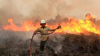An Indonesian firefighter combats the fire at Ogan Kemering Ilir, in South Sumatra, on September 12, 2015. Smog from forest fires in Indonesia has prompted the cancellation of flights and warnings for people to stay indoors, while pushing air quality to unhealthy levels in neighbouring Singapore and Malaysia. AFP PHOTO / Abdul QODIR        (Photo credit should read ABDUL QODIR/AFP/Getty Images)