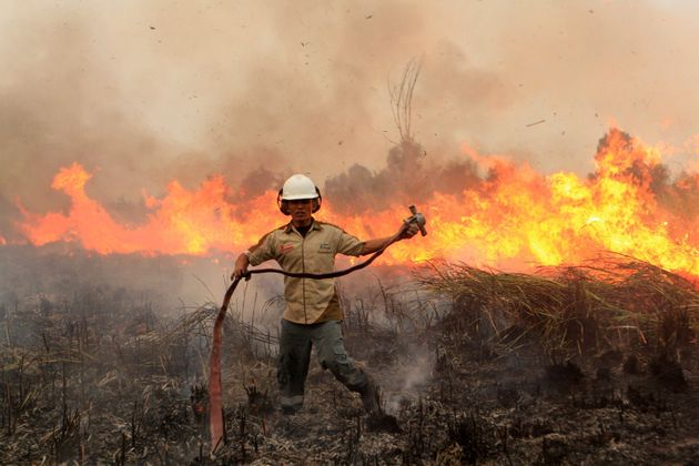 An Indonesian firefighter combats a forest fire in South Sumatra in September 2015. The haze returned...