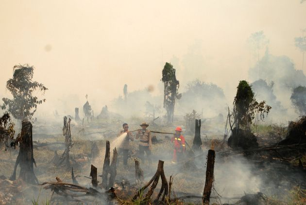 Authorities work to extinguish a forest fire in Riau province, Sumatra, Indonesia, in...