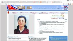 North Koreans Can Only Use 28 Websites, Here's What They