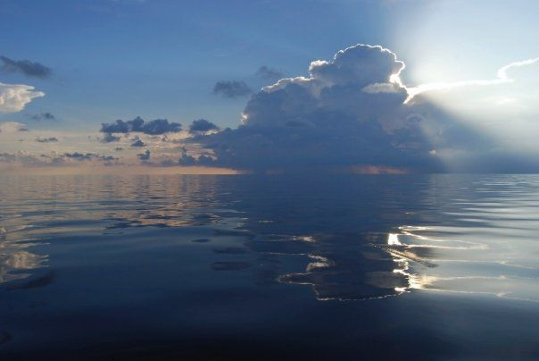 Reflections on a Calm Ocean