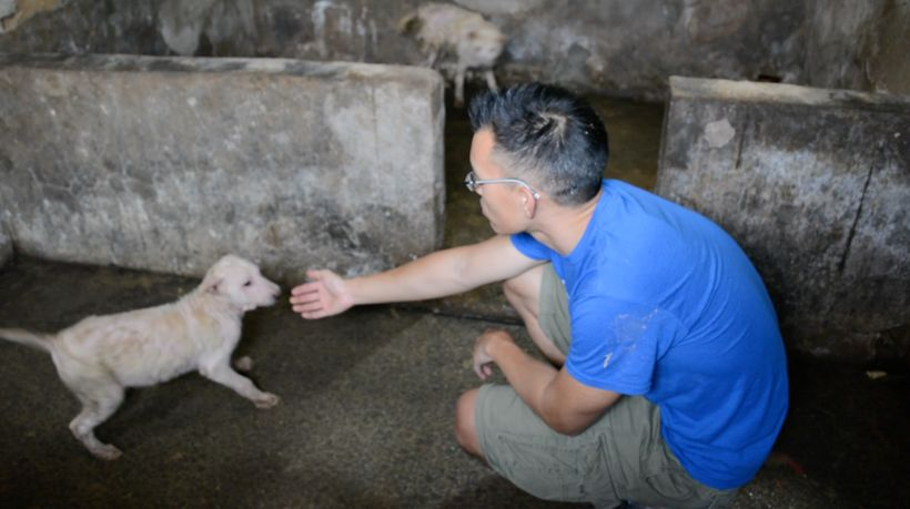 Activist Wayne Hsiung at dog meat farm.