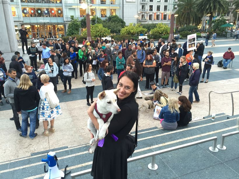 Julianne Perry and Lao, one of the dogs rescued from a Chinese dog meat farm.